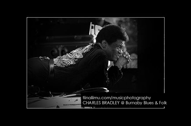 CHARLES BRADLEY @ Burnaby Blues & Folk Festival; Vancouver; 2013; tiina liimu music photography